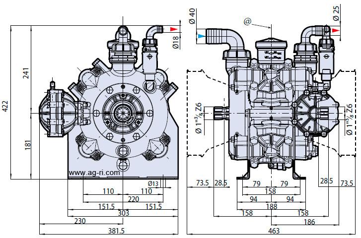 Размеры AR 160 bp